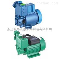 沁泉 WZB自吸泵,家用水泵