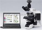 AlgaeC增強型-萬深AlgaeC增強型多功能生物監測儀藻類計數智能鑒定儀