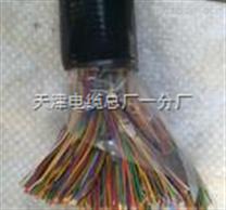 計算機通信電纜|ZR-DJYPV 1X2X0.75