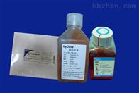 乳糖蛋白胨培养液