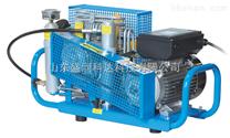 消防空气填充泵,空气充装泵(意大利、德国)