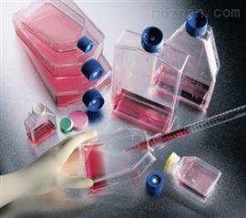 CEL:鸡胚原代肝细胞