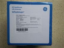 WHATMAN代理商WB120211指示型FTA微型卡