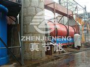 工业造纸污泥干燥机