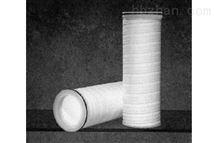 PALL颇尔(Ultipleat)系列1微米大流量过滤芯