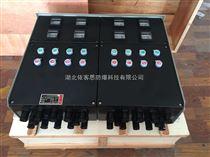 FXK-A2B1D1G防水防尘防腐控制箱