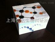 大鼠胰高血糖素样肽1(GLP-1) elisa试剂盒
