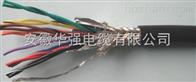 計算機電纜DJFFRP 5*2*0.75