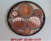 變頻電纜ZR-BPYJVPX12R-TK 3*10+1*6