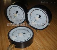 YZ-100水轮机检修密封压力表