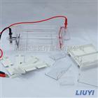 DYCP-31DN六一瓊脂糖水平電泳槽價格