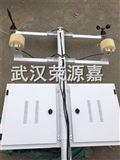 RG-JCM0室外扬尘检测仪联网