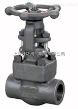 Z61H/Z61Y、Z11H/Z11Y内螺纹与承插焊闸阀