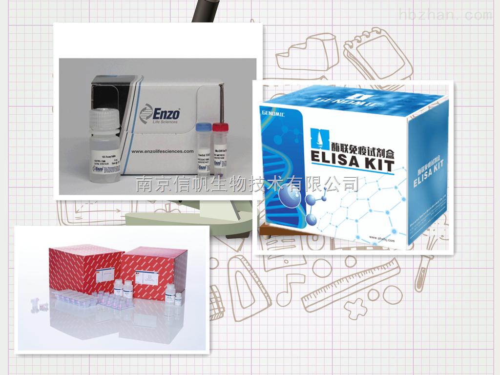 小鼠IL-12 p35 elisa试剂盒,白介素12 p35检测