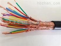 計算機儀表電纜DJYPVP22