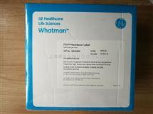 WHATMAN沃特曼PlantSaver Label植物存储FTA卡WB120065