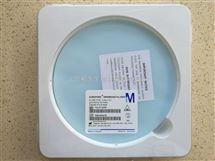 Millipore Durapore PVDF过滤膜142mm直径0.45um孔径HVLP14250