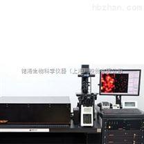超高分辨率显微系统(STED)