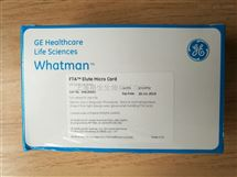 WHATMAN FTA Elute Micro Card洗脱微型卡WB120401