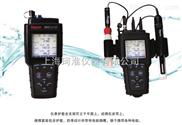 奧立龍520M-01A便攜式多參數水質測量儀