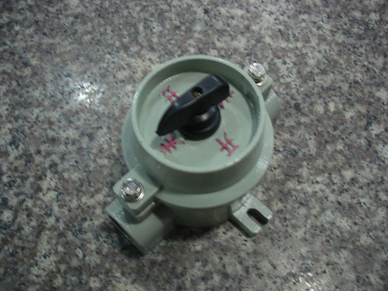 sw-10防爆照明開關 220/380v