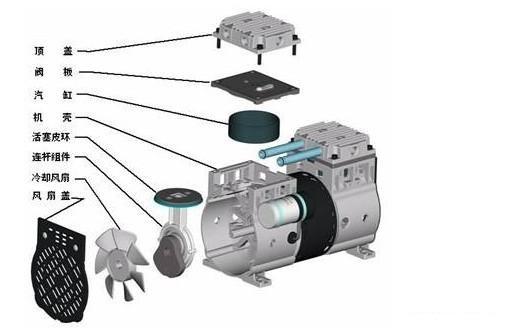 无油真空泵结构图