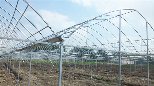 无锡日光温室大棚骨架卷帘机厂主要生产温室大棚系列产品:设计承建