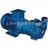 SKA2061直联水环式真空泵