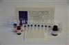 小鼠肾损伤分子1(Kim-1)ELISA试剂盒(定量/定性)