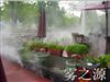 深圳福田户外餐厅人造雾景观