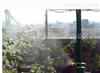 深圳罗湖 自动喷淋喷灌小区绿化雾化喷淋设备